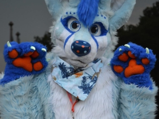 BlooRoo - ConFuzzled May 2016