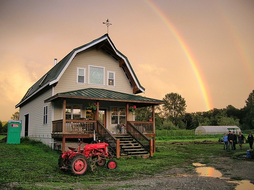 CARNATION – Changing Seasons Farm