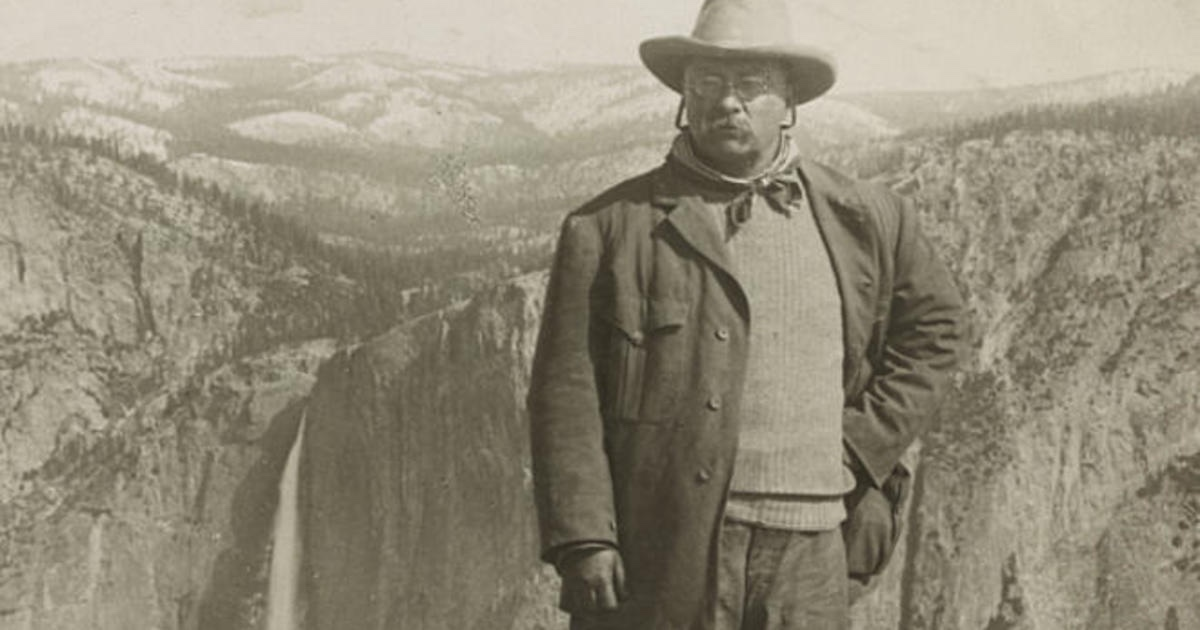 A Quote for 2020 – Teddy Roosevelt