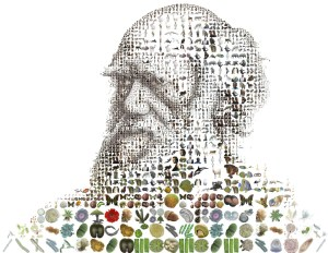 Mosaic portrait of Charles Darwin (c) Charis Tsevis/Flickr  (CC BY-NC 2.0)