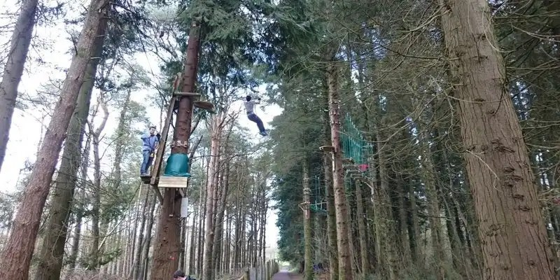 Zip Lining - Irish Rugby Tours, Rugby Tours To Cork