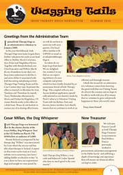ITD-Newsletter-Summer-2010