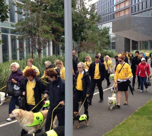 Sponsored Walk September 2013