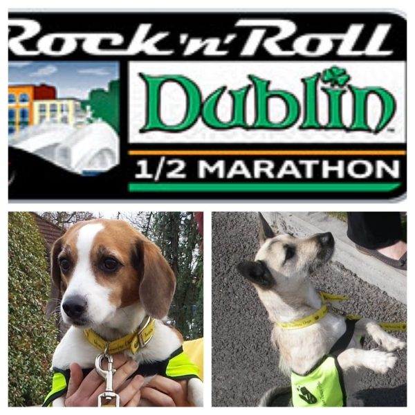 Rock and Roll Marathon