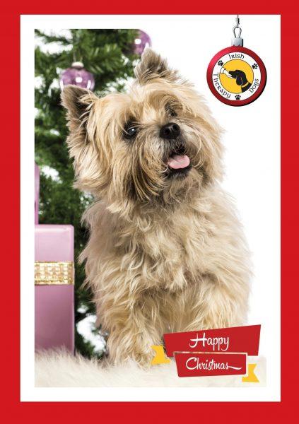 ITD christmas card jpeg (1)