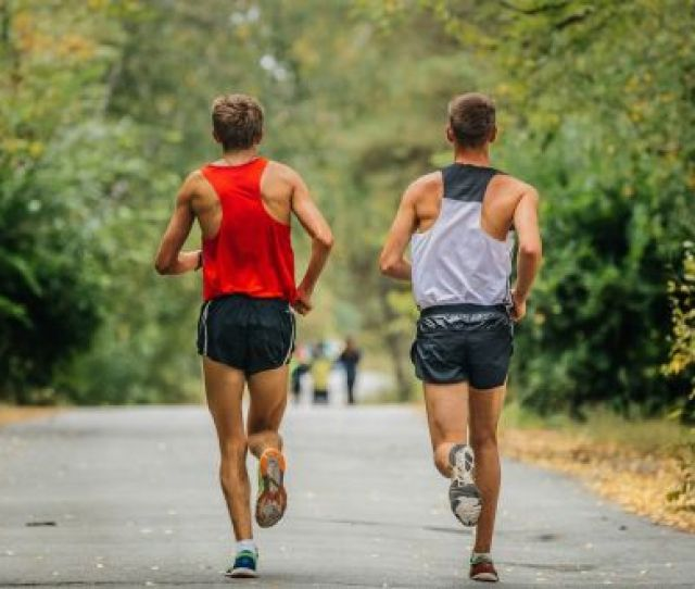 Online Survey Showed That Men Engaged In Higher Intensities And Greater Durations Of Endurance Training For