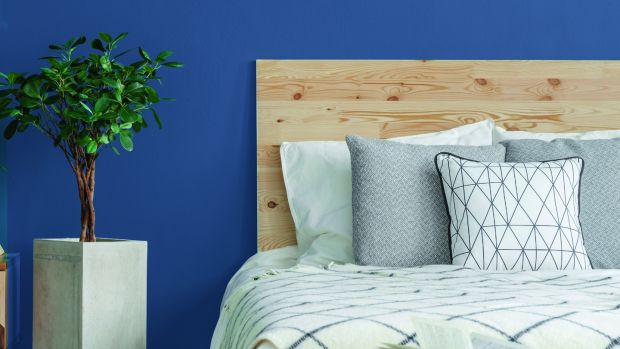 These inspiring designs are packed with great ideas on diy network. Five Colours That Will Work In Any Home