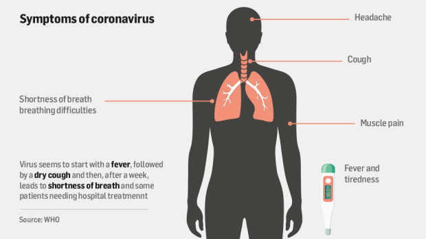 What is coronavirus and what should I do if I have symptoms?