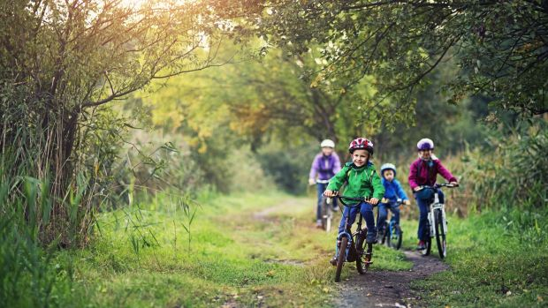 Mother with three kids riding bicycles in forest or park on sunny day. The boys are aged 6 and the girl is aged 9. Kids are smiling and having a good time.