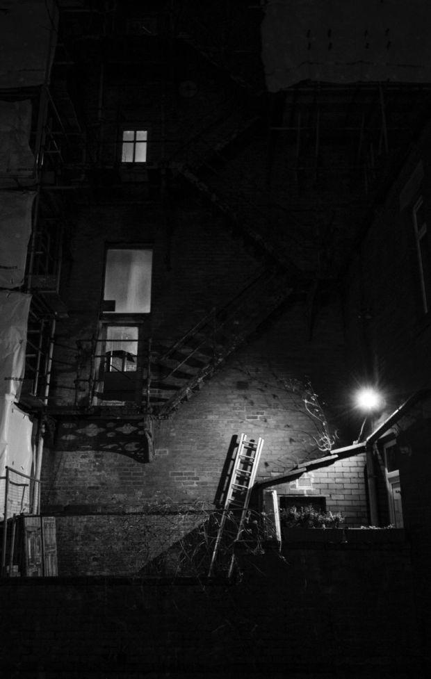 Ladder. Photograph: Euan Gebler
