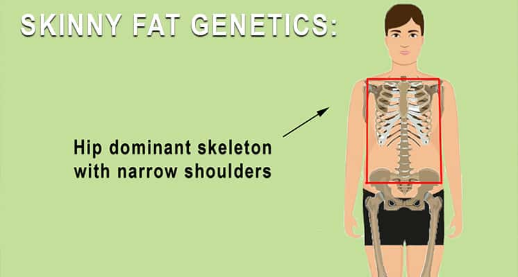 SKINNY FAT GENETICS