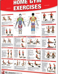 Exercise program gym images also routines rh exerciseroutinestsukensospot