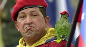 "President Chavez Recovering ""Like a Condor!"" and More"