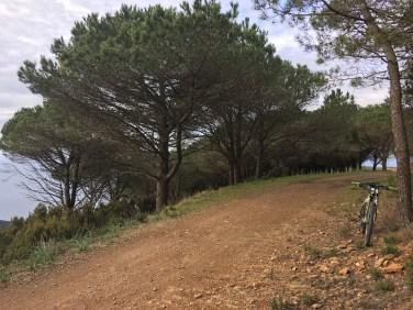 Anello in terra battuta molto veloce che gira attorno alla cima del Monte Calamita, tratto della 1^ tappa di pareti.