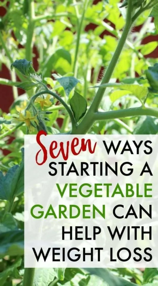 Starting a vegetable garden can help you in more ways than one! Here's why you should be gardening for weight loss and the tools beginners need for veggie gardening.