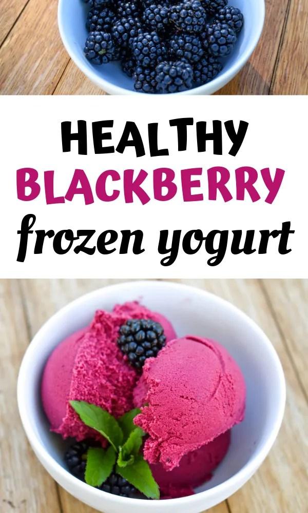 healthy blackberry frozen yogurt recipe