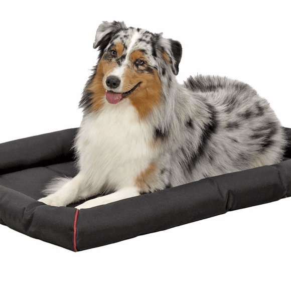 durable crate pad pet bed