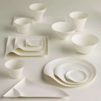 Green Disposable Japanese Tableware Designs from WASARA ...