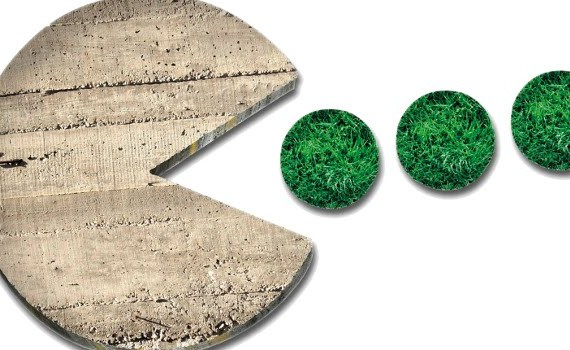 consumo di suolo, il suolo la radice della vita