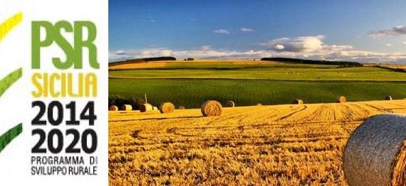 programma di sviluppo rurale psr sicilia 2014-2020