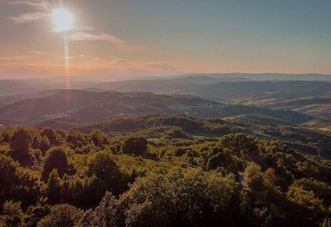 blasoni Trevico e la baronia