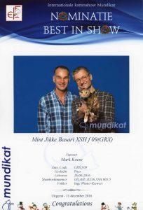 mundikat_111216_jikke_small