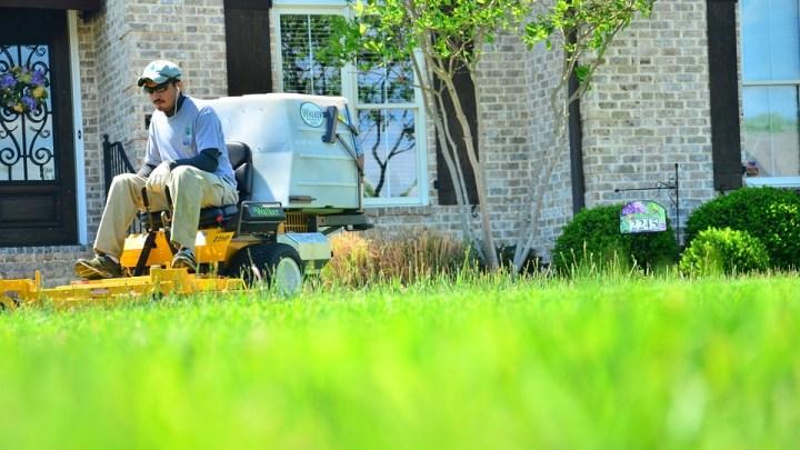 man using Lawn