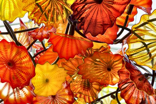 chihuly_top_banner