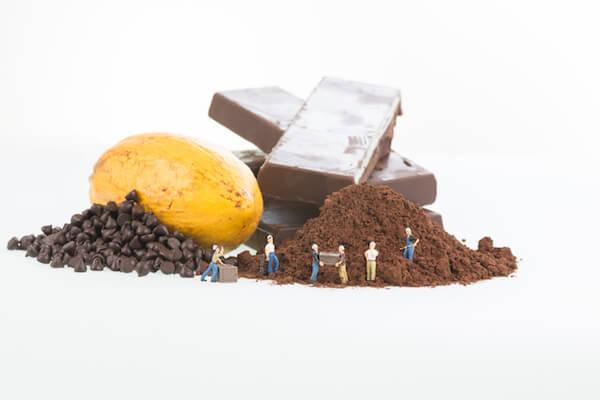 カカオ豆とチョコ