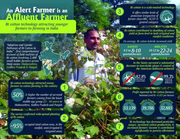 Infographics India Cotton