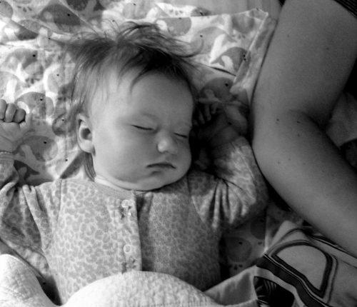 Sleeping after her morning breakfast!