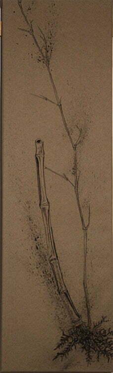 Bambou - N°12 - 30x100cm - encre de Chine sur toile - 2013 - 140 €.