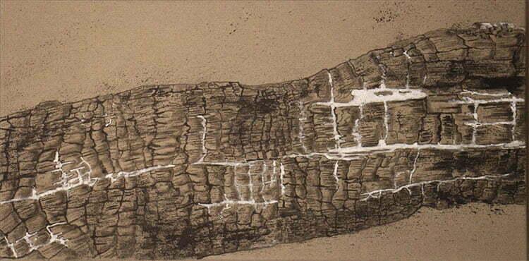 Bois brûlé N°5 - 50x100cm  - encre de Chine sur toile - 2013 - 200 €.
