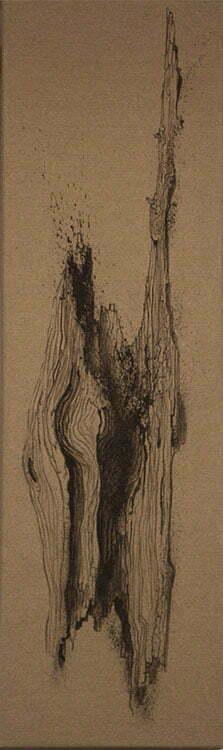 Bois de cade - N°1 - 30x100cm - encre de Chine sur toile - 2013 - collection particulière.