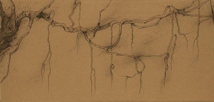 Racine - N°7 - 60x125cm - encre de Chine sur toile - 2011 - collection particulière.