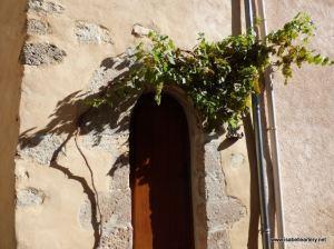 montfort-porte-cep-vigne