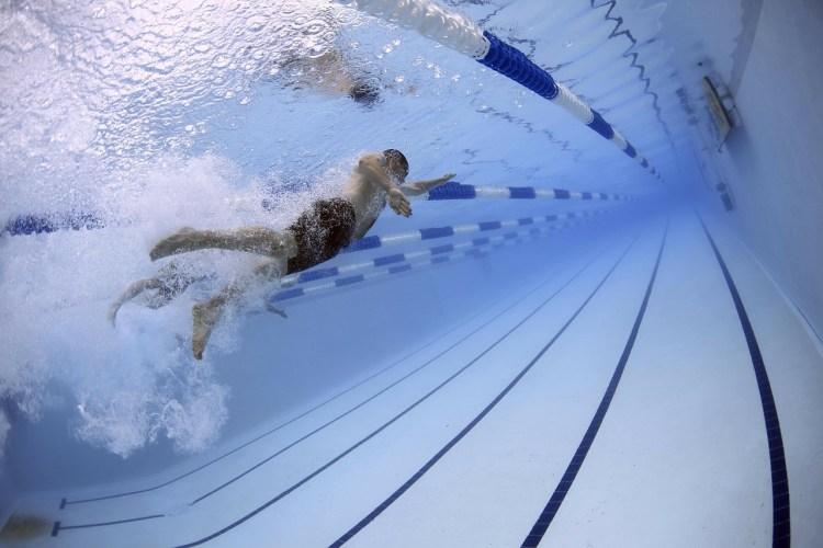 Des nageurs, chacun dans leur couloir de piscine nagent dans une même piscine.