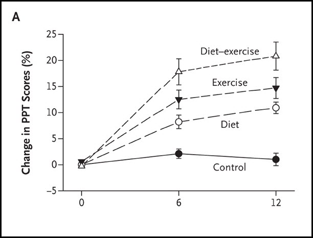 Safe Weight Loss for Seniors through Diet and Exercise