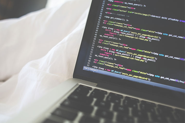 Which Web Programming Language Should You Learn?