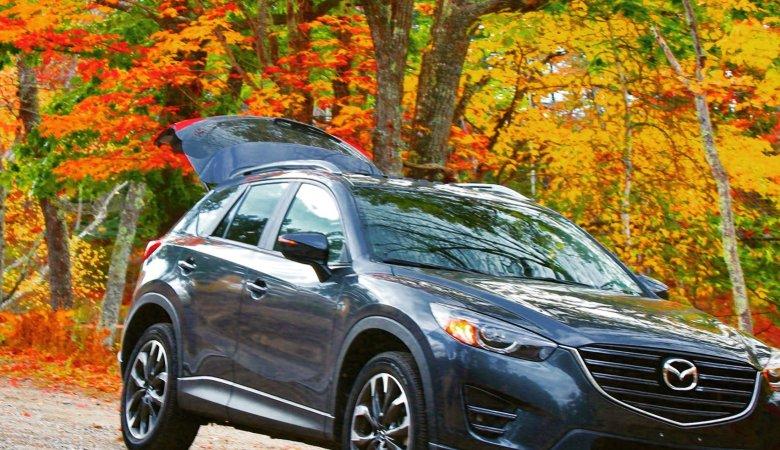 Mazda in Fall Colors