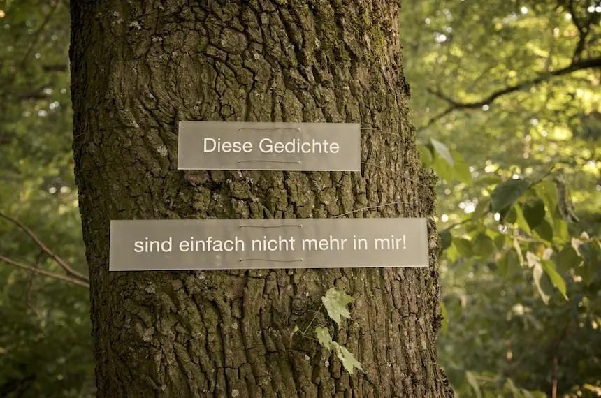 Carola Zechner - Achternbusch | Foto: Monika Schreiner ISARBLOG