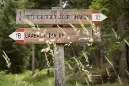 Kräuterwanderung mit Simone Lechner