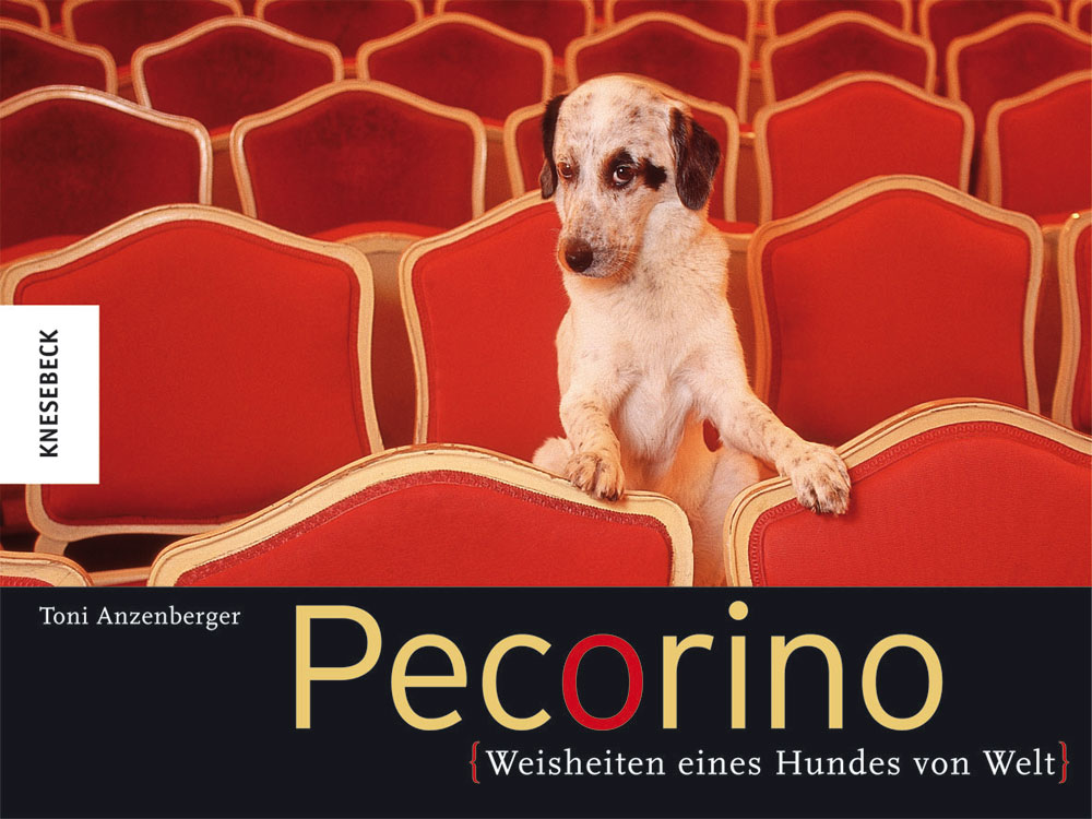 Toni Anzenberger Pecorino: Weisheiten eines Hundes von Welt