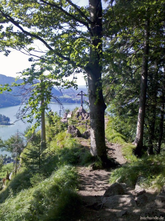 Aussichtspunkt bei der Burg Hohenwaldeck