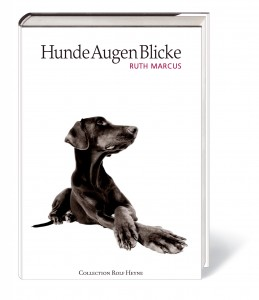 hundeaugenblicke-cover