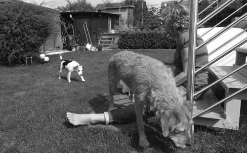 Anke mit Leo und Lucy von Lucies Hundefutterblog. Foto: Lucies Hundefutterblog