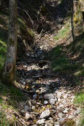 Wir kommen an dem ein oder anderen kleinen Bach vorbei - fraglich ist nur, ob diese im Sommer auch noch Wasser führen