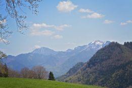Ein bisschen Schnee am Gipfel hätten wir auch gerne gehabt, mussten uns aber mit dem Blick auf höher gelegene Schneereste begnügen