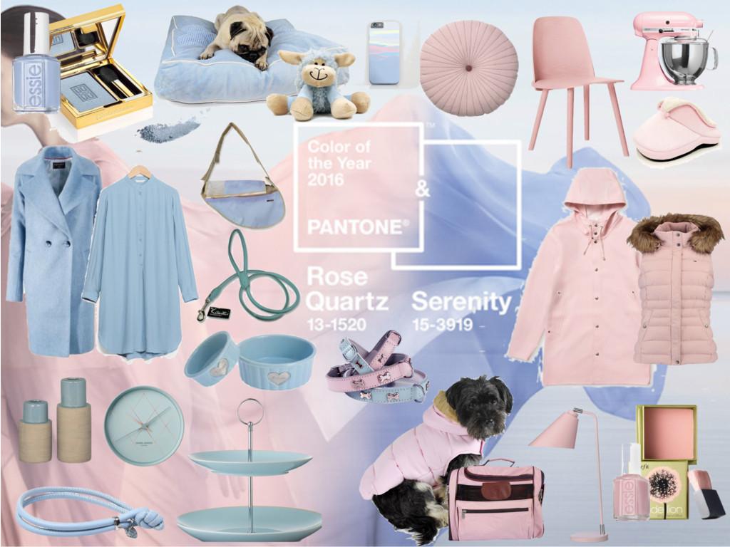 sch nes hundeleben rose quartz und serenity farben des. Black Bedroom Furniture Sets. Home Design Ideas