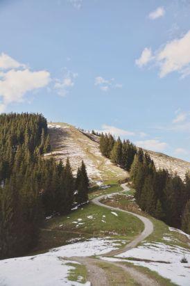 Blick zurück zum Gipfel des Zwieselbergs.